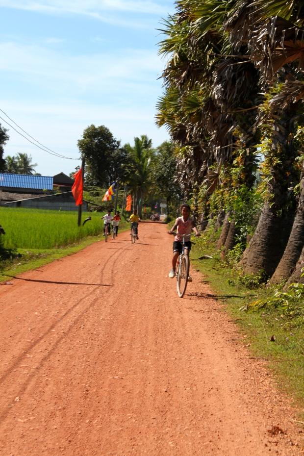 Kampot province countryside