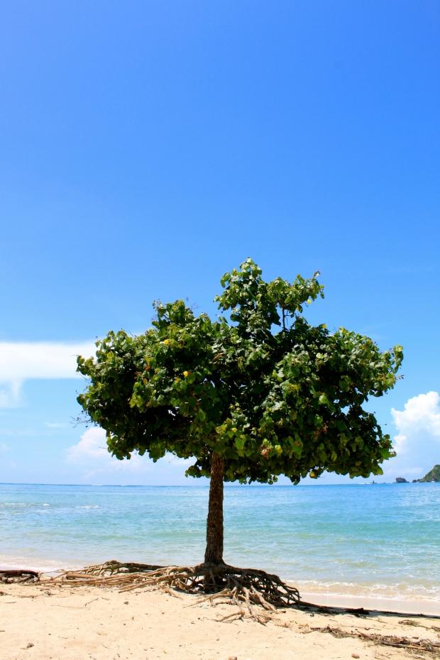 Kuta Beach in Lombok