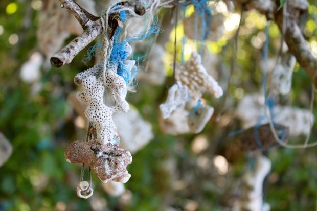 Coral shrine on a tree on Satonda Island