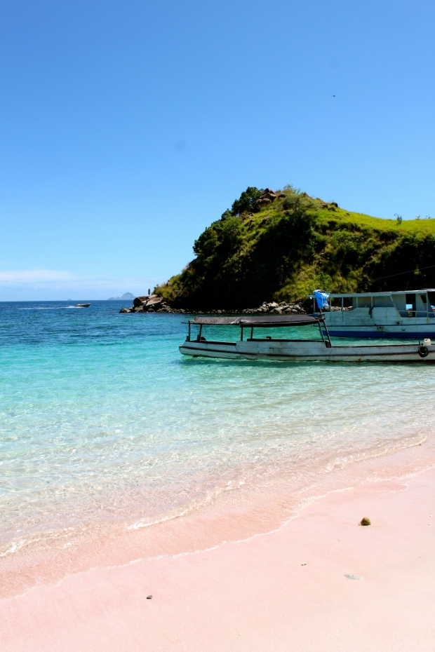 Pink beach on Komodo Island