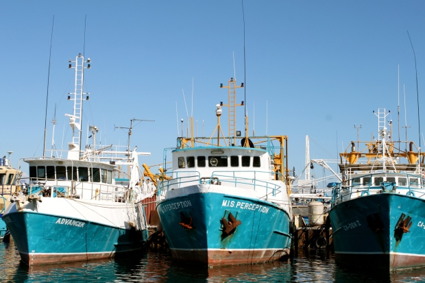 Fremantle fishing harbour