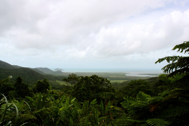 The mouth of the Daintree River heading out to sea