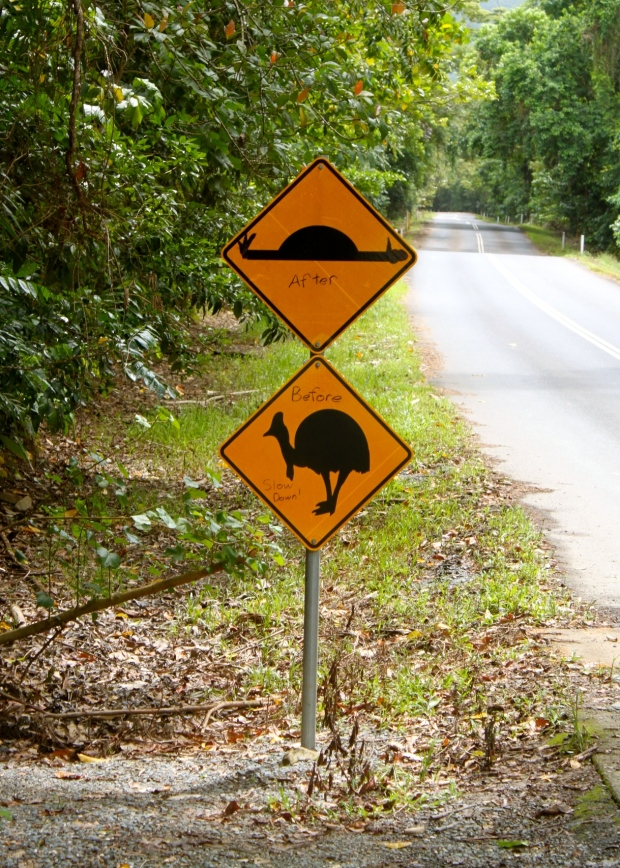 Mind the cassowaries - graffiti on the speed bump sign
