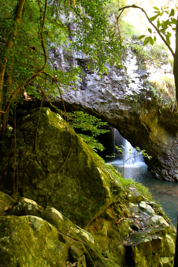 Natural Bridge in Springbrook National Park