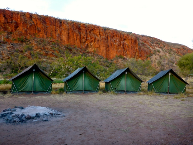 Our camp at Glen Helen Gorge