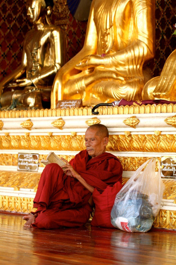 Monk reading at the Shwedagon Pagoda