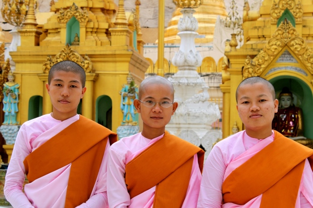 Nuns at Shwedagon Pagoda