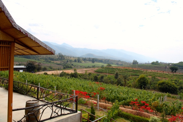 Red Mountain Winery, near Inle Lake
