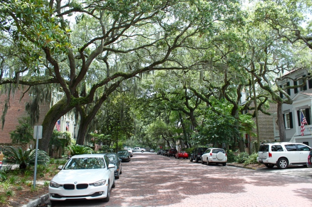Beautiful Savannah